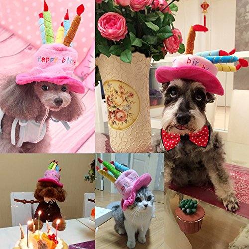 Cute Adorable Cat Dog Pet Happy Birthday Party Hat With Cake And 5 Col